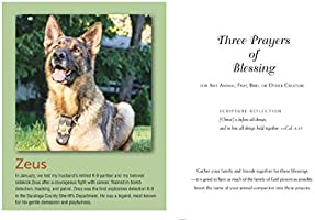 Do Pets Go To Heaven?  Now theres biblical proof you can believe in (revised and expanded)