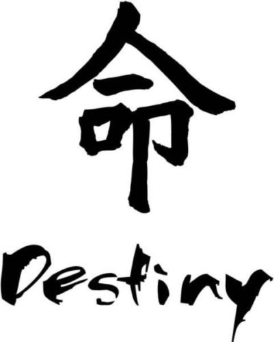 Amazon Destiny Chinese Symbol Character Graphic Car Truck