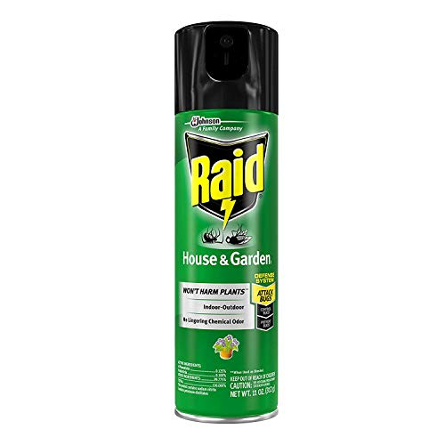 Raid House & Garden I, 11 oz (1 ct) (Pack - 3)