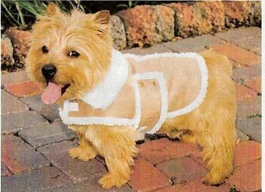 Amazon.com : FAUX SHEARLING DOG COAT - MEDIUM : Pet Coats : Pet ...