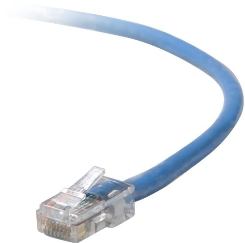 Blue Moon Cord (Belkin  CAT5E Patch Cord, Blue -)