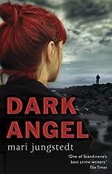 Dark Angel: Anders Knutas series 6