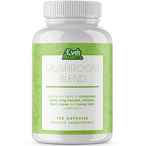 6 Mushroom Powder Blend Supplement – 1000mg Capsules with Cordyceps, Lions Mane, Reishi, Turkey Tail, Shiitake, and King Trumpet – Support Your Overall Health and Immune System (120 Count) Review