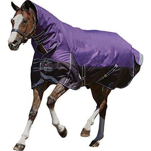 Weatherbeeta Comfitec Heavy Plus Dynamic Combo Neck Turnout Blanket (6 ft 6) (Purple/Black)