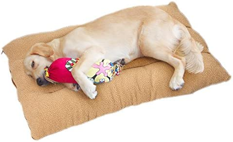Pillow Mattress for Dogs