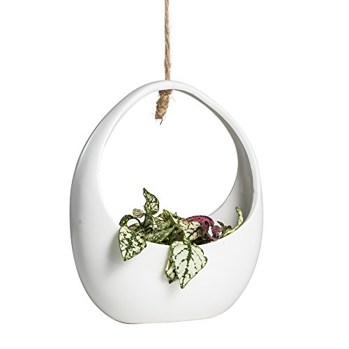 Round Post Stone (Round White Hanging Ceramic Planter NCYP Modern Vintage Style Indoor Outdoor Vertical Garden Wall decor Flower Pot Cute Decorative Container Display Holder for Succulent Air Plants)