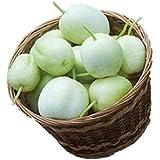 アップルきゅうり 種 6粒 新品種 有機認証済み