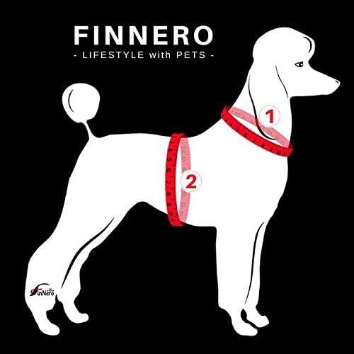 FinNero ATTE Warnweste f/ür Hunde Gr/ö/ße XS