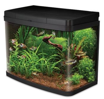 Interpet Insight Glass Aquarium Fish Tank Premium Kit 40