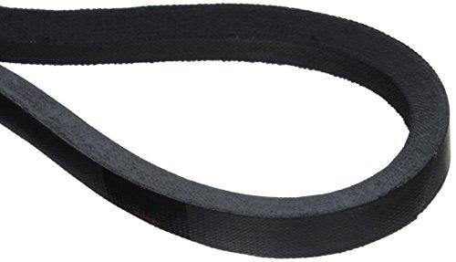 A61 V-Belt