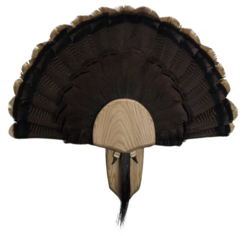 Walnut Hollow Country Turkey Mounting & Display Kit in Solid Oak