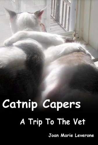 A Trip To The Vet (Catnip Capers Book 3)