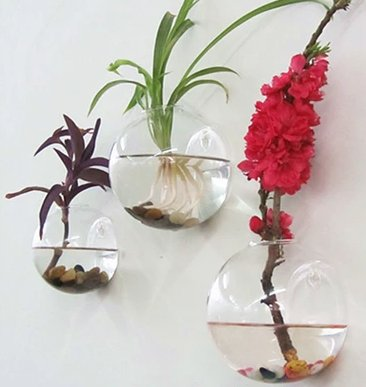 Amazon Wufa Hanging Glass Wall Vase Flower Plant Terrarium