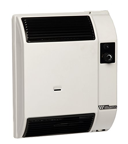 Williams Furnace Gathering 0743512 Natural Gas Direct-Vent High Efficiency Furnace