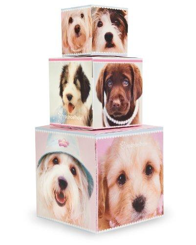 BirthdayExpress Rachael Hale Glamour Dogs Party Supplies - Centerpiece Gift -