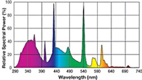 Exo-Terra-Repti-Glo-100-Fluorescent-Lamp-20-Watt24-Inch