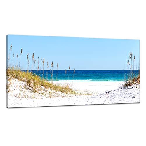Canvas Wall Art Sea Beach Stretched and Framed Artwork for Home Decoration Seascape Wall Art Blue Canvas Painting Reed on Beach Sunny day 1 Panels Ready to Hang for Living Room Bedroom Size:20x40inch from JLXart