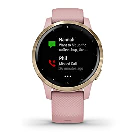 Garmin vivoactive 4S, Smaller-Sized GPS Smartwatch, Features Music, Body Energy Monitoring, Animated Workouts, Pulse Ox Sensors And More, Light Gold With Light Pink Band