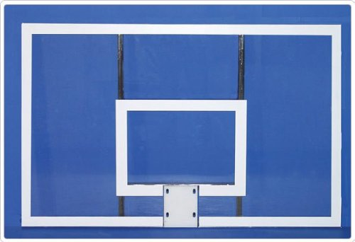 Sport Play 542-200G Acrylic Rectangular Backboard w/ Official Goal & Nylon Net by Sports Play
