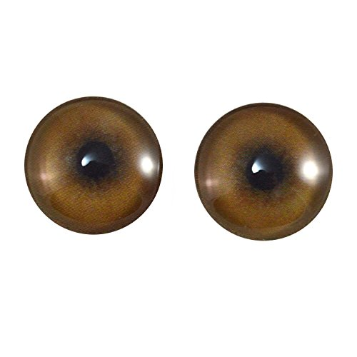 20mm Pair of Lion Glass Eyes, for Jewelry Making, Art Dolls, Sculptures, and More