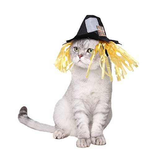Namnan Pet Cat Hat Scarecrow Cap Halloween Cosplay Costume