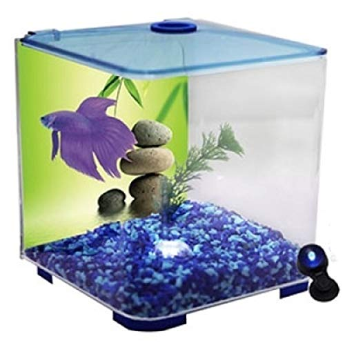 Betta Style Acrylic Fighter Fish Tank with LED Light bluee 3 litres (Aqua One)