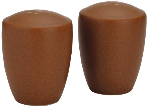 Noritake Colorwave Terra Cotta Salt and Pepper