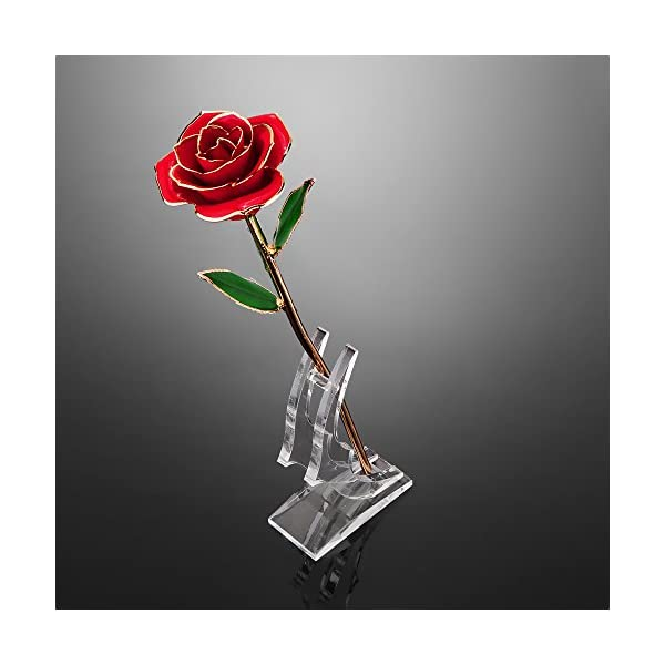 DDSKY-Gold-Rose-24K-Gold-Trimmed-Rose-Long-Stem-Flower-with-Transparent-Stand-Creative-Romantic-Gift-for-Valentines-Day-Mothers-Day-Anniversary-Red