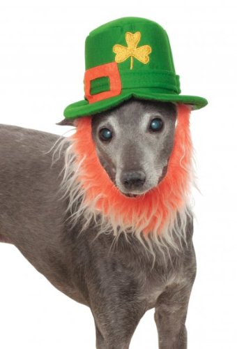 Rubies St. Pattys Day Pet Costume Hat with Beard, Small/Medium