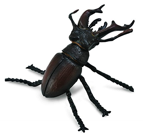 CollectA Insects Stag Beetle Toy Figure - Authentic Hand Painted Model ()