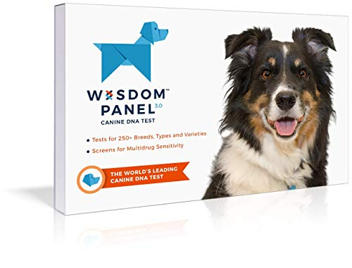 Mars Veterinary Wisdom Panel Dog DNA Test Kit - Canine Breed Identification and Ancestry Information