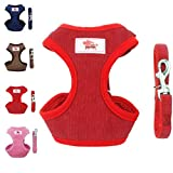 XAMAWA Dog Vest Harness Walking Adjustable Safety Vest for Puppy for Small Dogs or Fat Cats Dogs Pet Outdoor (with Rope)
