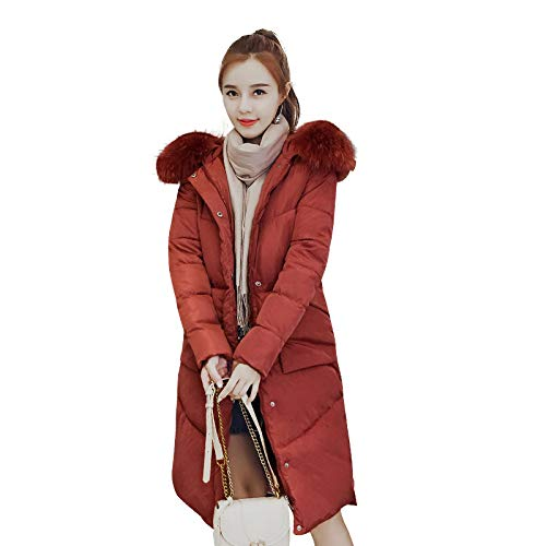 Femminile Da Invernale Cappotto Rosso Piumino Cintura Casual Arrugginito Sottile Piumino Giacca Femminile Pesante Azw Studente wqntF1Upx