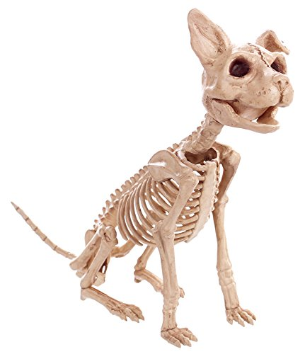 Crazy Bonez Sitting Skeleton Kitty