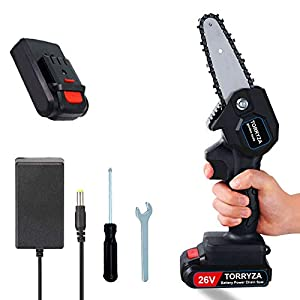 TORRYZA Mini Chainsaw 4-Inch Cordless Power Chain Saws, Portable 26V Electric Chainsaw, Pruning Shears Chainsaw for…