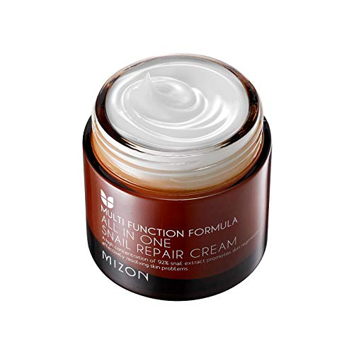 Mizon All In One Snail Repair Cream, Day and Night Face Moisturizer with Snail Mucin Extract, 75ml