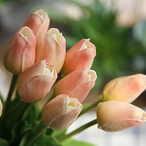 COOBL Artificial silk flower High grade decorative tulip flower wedding bouquet bride holding garlands vine DIY Floral art plant bride Home Decor(20pcs) (champagne) 5