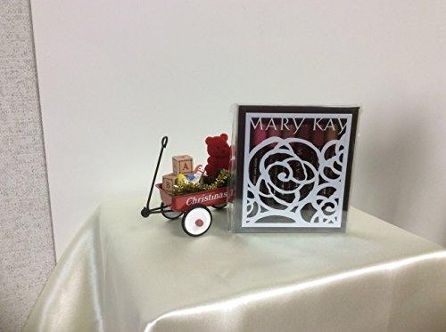 Mary Kay Mini - Mary Kay Mini Nourishine Plus Lip Gloss Set