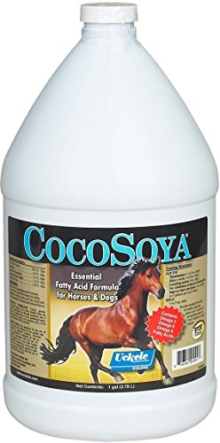 Uckele 1 Gal CocoSoya Fatty Acid Formula For Horses Weight Gain Supplement. Corn Vegetable Oil (Oil Gallon 1 Weight)