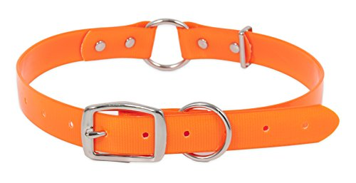 ASPEN PET PRODUCTS 10798 RuffMaxx Waterproof Center TPU O Ring Collar, 1 by 20 to 28-Inch Aspen Pet Adjustable Dog Collar
