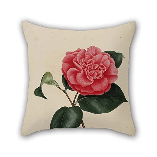 Flower Throw Cushion Covers 20 X 20 Inches / 50 By 50 Cm Gift Or Decor For Christmas Pub Her Valentine Bench Gril Friend - Two Sides (Her Gifts Christmas For $20)