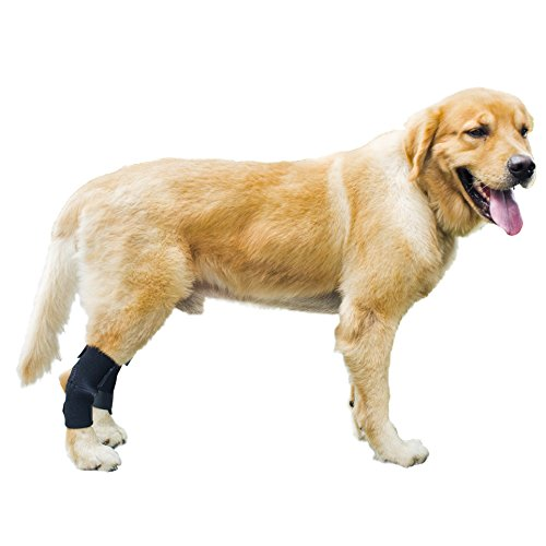 GNIKS Dog Rear Leg Wrap Protects Brace Pets Joint Hock Paw Compression Wraps For Protects Wounds Brace Heals and Prevents Injuries and Sprains (L)