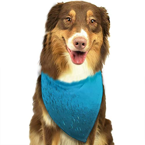 MODREACH Bandana-Washable and Adjustable Pet Triangle Scarf Bibs Undersea Ocean Fish Group Accessories for Small Medium Large Dogs/Cats