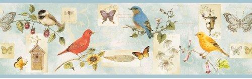 Bird Border (Songbird Birds Collage Wallpaper Border - Blue - Butterflies, Bluebirds, Flowers)