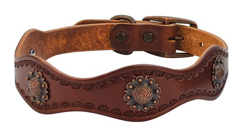 Weaver Leather Sundance Dog Collar, 3/4 x 15-Inch, Brown