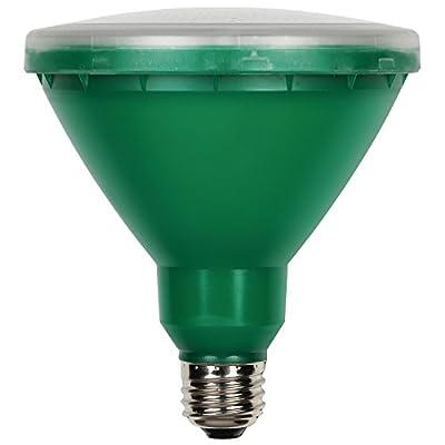 Westinghouse 0314900 15W PAR38 LED Outdoor Bulb, Flood Green E26 (Medium) Base, 120V, Box