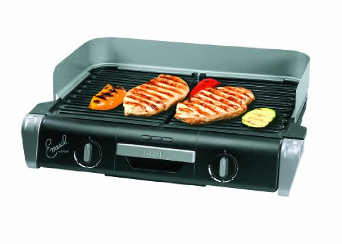 t fal family griddle - 4
