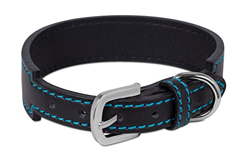 Internet's Best Black Leather Dog Collar with Blue Stitching | Medium | 12.5 – 16 Inch (1.375