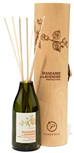 Paddywax Eco Collection Reed Oil Diffuser Set from Paddywax