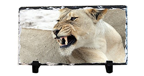 (HARLAN Personalized Square Shape Rock Slate Stone painting and Custom Lion rock painting DIY Photo Plaque Nice Family Memory Keepsake Gift)